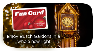 Image Result For Busch Gardens Buy One Get One Free Fun Card