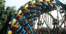 Kumba Busch Gardens