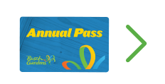 Best Value - ANNUAL PASS