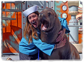 What do i need to major in or/and take to become a marine animal trainer?