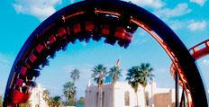 Scorpion Busch Gardens